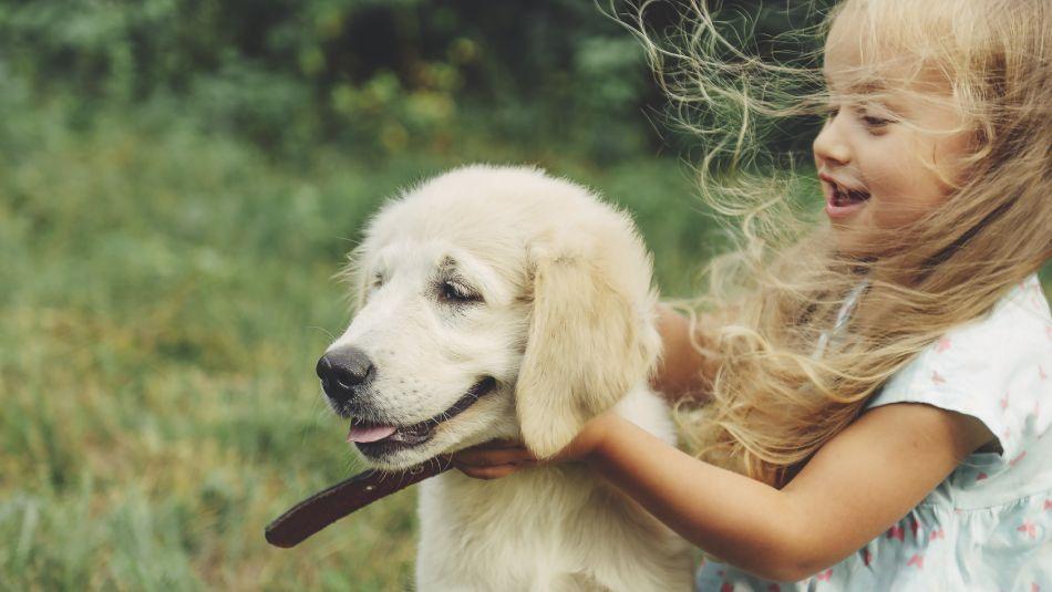 Races de chien pour enfant